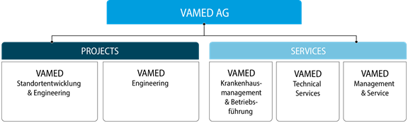 VAMED Company Structure 2020